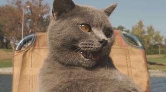 给猫爷做艘水上摩托艇,看猫爷在水面上纵横驰骋