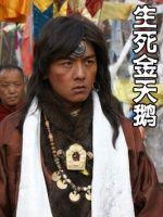生死金天鹅(战争片)
