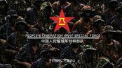 八一军旗,热血染成,解放军建军90周年阅兵扬我国威