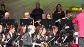 民乐合奏【拉德斯基进行曲】指挥:陶青 演奏:美国中华国乐团 1-17-2020