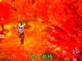(LIVE)Matsuura Aya - Watarasebashi(HM 20041024)[hi.baidu.com@jpmmpv]