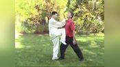 当年杨露禅练的太极拳每一招实战用法也是这个样子吗?