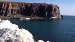 美丽的青海湖鸟岛