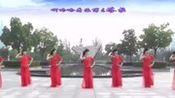广场舞大全 博尔塔拉我可爱的家乡 中三抒情舞 含背面动作分解
