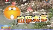 """垃圾填满河道清理基本靠""""冲""""(一)"""