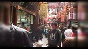 宋寅2010年上海世博会之上海之行-豫园老街