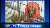 西安:女子打4针疫苗仍狂犬病发身亡