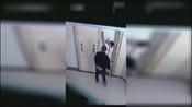 贵州岑巩:女婿拧开电梯门岳父踏空坠亡 女婿:开电梯门是想检查