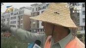 2015重大交通事故死亡现场视频