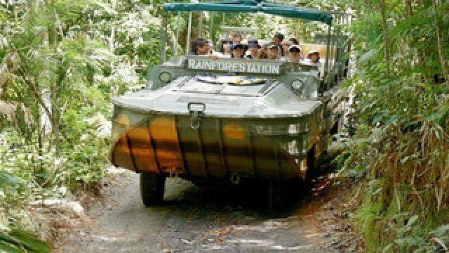 老司机带你探访《阿凡达》灵感之源:库兰达雨林