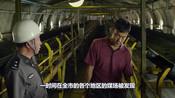 几分钟看《白日焰火》,罕见横扫柏林电影节的华语片