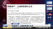 凯越停产 上海将来造什么车