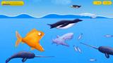 大鱼吃小鱼 企鹅太大了,鲨鱼吃不掉它
