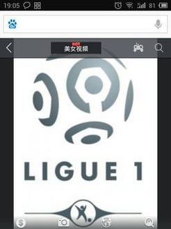 法国足球甲级联赛