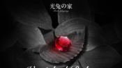 【最终幻想14】摩杜纳RP店『光兔之家』9.26解密夜《金秋之旅·消失的红宝石》直播录像