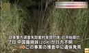日警方公布中国姐妹死因:被勒窒息