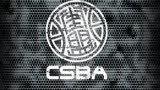 街盟CSBA-2007年第四期街球教学-1