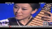 月儿高 琵琶演奏:赵聪