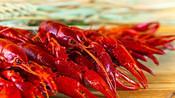 德国小龙虾泛滥成灾,当地群众哭诉,如何才能将它做成美味佳肴!