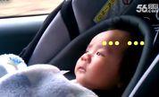 整个世界萌萌哒166:过桥洞吓坏宝宝