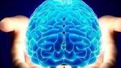 【最强大脑】增强记忆力和脑力的阿尔法脑波音乐|提高学习效率|集中注意力|专注力|开发右脑|缓解压 力,大幅提高记忆力【第二期】