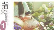 【造园记#115】中国最美私家花园——指尖姐姐的花园:治愈