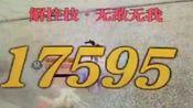 【天涯明月刀ol】雷电攻击!?秒伤过万!?4.5核花论剑速杀4.2神威