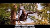 男子能跟动物交流,为了挽救森林,他给熊介绍一个对象!电影《怪医杜立德2》4电影