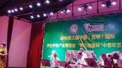 乡鸭湖大舞台表演唱实况录像视频(2019年7月24日)