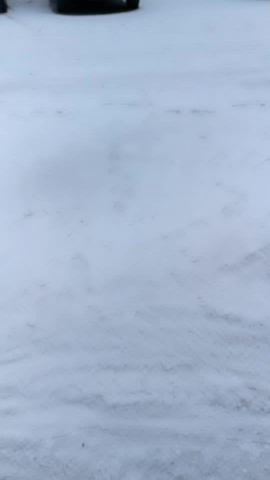 2017年第一场雪,来的稍晚
