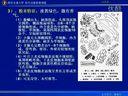 生药学39-视频教程-西安交大-到www.Daboshi.com—在线播放—优酷网,视频高清在线观看