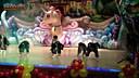 [高耀太金钟民小站(koyotekjm.com)] Sali Go Dali Go 舞蹈