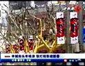 申城街头年味浓 张灯结彩迎新春