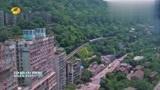 快乐哆唻咪:杨迪与张欣尧来到重庆,关于拍摄思路产生分歧