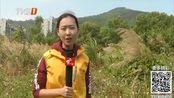 深圳:天文猎人发现奇石 或为深圳首颗陨石!