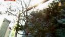 七只鸭电影网在线观看(www.777ya.com)我们结婚了01