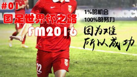 【高洪波国足世界杯之路】EP.1力战卡塔尔 FM2016足球经理 娱乐视频连载 中国队加油 力战卡塔尔