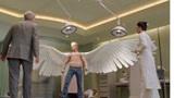 鸟都进化出了翅膀,为何人类没有?网友:我宁愿没翅膀也不想弱智