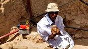 埃及考古重大发现 文物数量丰富