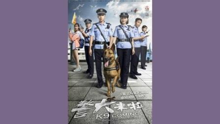警犬来啦第45集