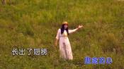 王一菲-祝福草原(原版)红日蓝月KTV推介