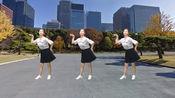 老歌新跳广场舞《下辈子不一定遇见》回味金典 舞步简单又好看