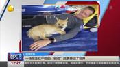 """温情故事:一场发生在中国的""""碰瓷""""故事感动了世界"""