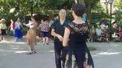 (7)莲花庄跳舞2019年8月16日晓星摄