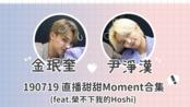 【中字/珉漢MinHan】SEVENTEEN 金珉奎尹淨漢190719直播甜甜Moment合集(feat.榮不下我的Hoshi)