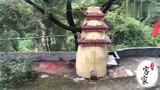 """广东梅州罗浮山""""石古大王""""庙会,祈求全家健康平安,转发收藏!"""