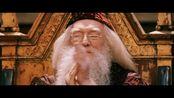 哈利波特七部曲之魔法石