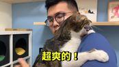 【黃阿瑪的後宮生活】【新後宮QA!第一個被尿的地方?】志銘與狸貓