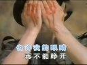 董文华 - 血染的风采