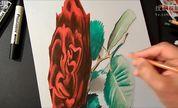 逼真手绘3D红玫瑰延时摄影